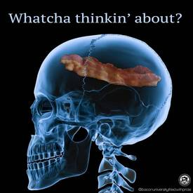 Bacon Brain.