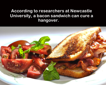Bacon Cures Hangovers!