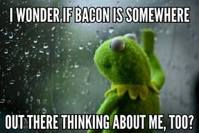 Kermit Loves Bacon!