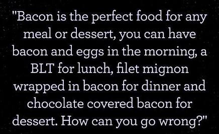 Bacon Is The Perfect Food!