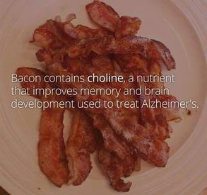 Bacon Is Good For Everyone!