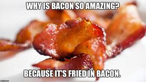 Why Is Bacon So Amazing?