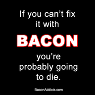 Bacon Can Fix It!