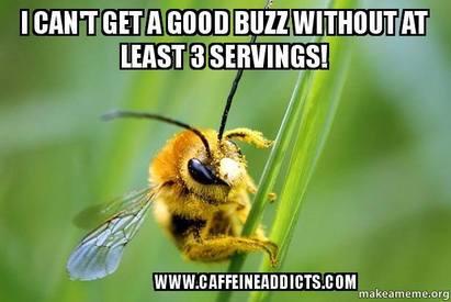 Caffeine Buzz!