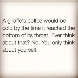 Poor Giraffe!