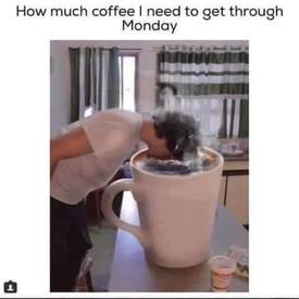 How Much Coffee Do You Drink Daily?!
