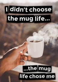 Mug Life!