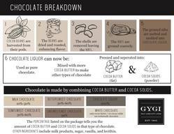 Chocolate 101: How Chocolate Is Made!