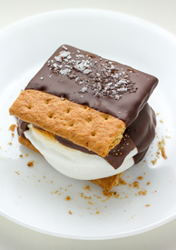 Chocolate Covered S'mores!
