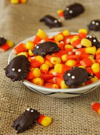 Creepy Crawly Chocolate Cockroaches!!