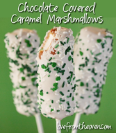 Chocolate Marshmallow Caramel Pops!