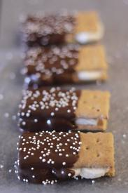 Chocolate Dipped S'mores!