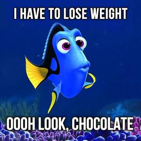 Weight Loss Vs Chocolate!