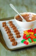 Chocolate Covered Gummy Bears!