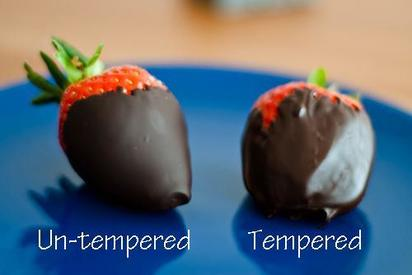 Tempered vs. Untempered Chocolate