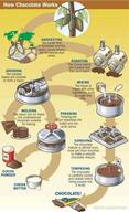 How Chocolate Works!
