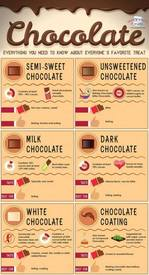 Chocolate: Everything You Need To Know!