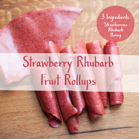 Homemade 3 Ingredient Strawberry Rhubarb Fruit Rollups!