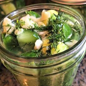 Homemade Claussen Pickles!