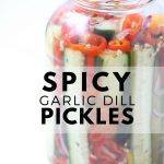 Homemade Spicy Garlic Dill Pickles!