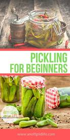 Pickling For Beginners!