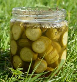 24 Hour Pickles!