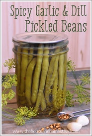 Spicy Garlic & Dill Pickled Beans!