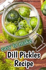 Easy Dill Pickles!