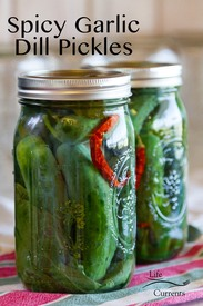 Spicy Garlic Dill Pickles!