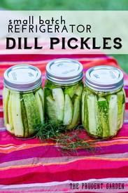 Small Batch Refrigerator Dill Pickles!