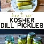 Classic Kosher Dill Pickles!
