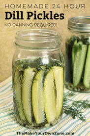24 Hour Dill Pickles!