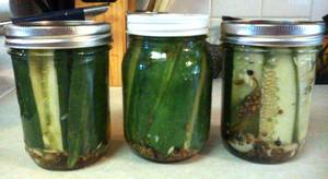 10 Minute Refrigerator Pickles!