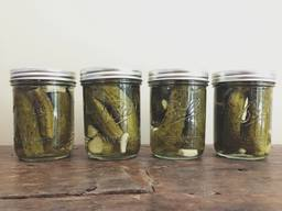 Dill-icious Homemade Pickles!