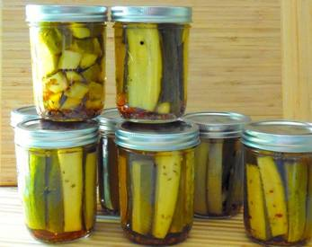 Easy And Quick Dill Pickles!