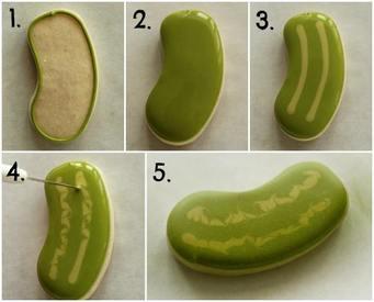 Pickle Cookies!