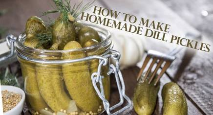Homemade Dill Pickles!
