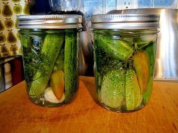 Hot Dill Garlicky Pickles!