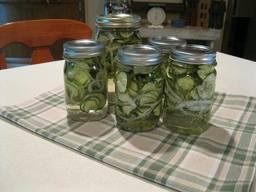 Easy Sweet Refrigerator Pickles!