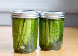 Easiest 48 Hour Fridge Pickles!