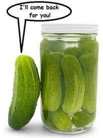 Pickle Family?