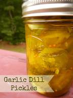 Garlic Dill Pickles!