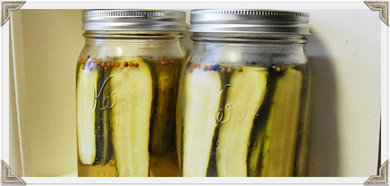Claussen Copycat Pickles!