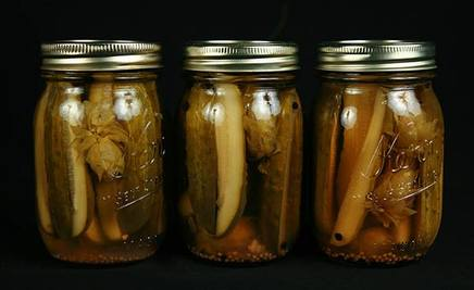 Hops Beer Pickles!