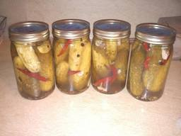 Cold Water Packed Pickles!