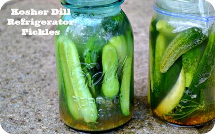 Kosher Dill Refrigerator Pickles!