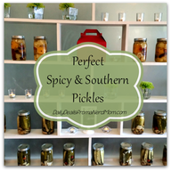 Perfect Spicy & Southern Pickles!