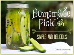 Simple & Delicious Homemade Pickles!