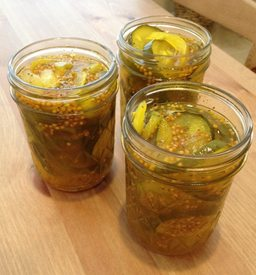 Crunchy Bread & Butter Pickles!