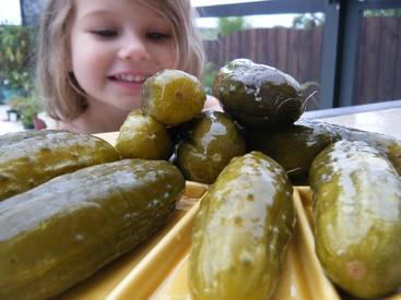 Old Fashioned Barrel Pickles!